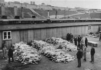 Mucchi di cadaveri fotografati subito dopo la liberazione del campo di concentramento di Mauthausen. Austria, dopo il 5 maggio 1945. — US Holocaust Memorial Museum