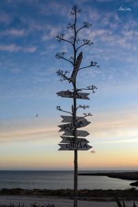 Lampedusa4_chiarascattina